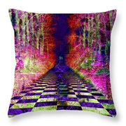 Rawa River Abstract Art Throw Pillow by Mary Clanahan