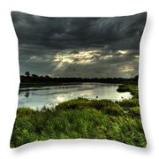 Lake Worth Sunlight Throw Pillow