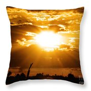 Rays Throw Pillow