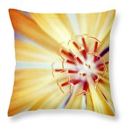 Rays Of Joy - S01-21at1c Throw Pillow