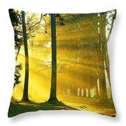 Rays Of Sun Throw Pillow