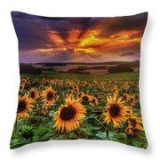 Rays Of Sunflowers Throw Pillow