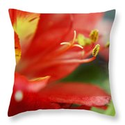 Reach Abstraction Limited Edition Bodecoarts Throw Pillow