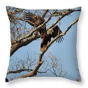 Reach For New Heights Throw Pillow
