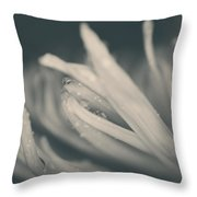 Reach Out And I'll Be There Throw Pillow by Laurie Search