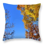Reach Out And Touch Throw Pillow