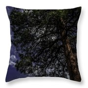 Reach The Sky Throw Pillow