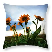 Reach To The Heavens Throw Pillow