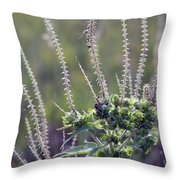 Reaching For Fall Throw Pillow