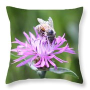 Reaching For Nectar Throw Pillow