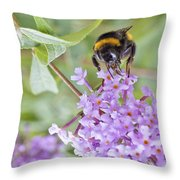 Reaching For Nectar Throw Pillow