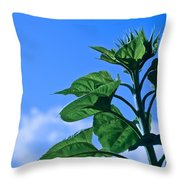 Reaching For Sunlight Throw Pillow