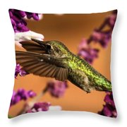 Reaching For The Nectar Throw Pillow