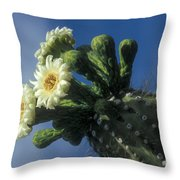 Reaching For The Sky Throw Pillow