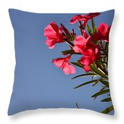 Reaching Out 30016 Throw Pillow