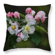 Reaching Sunlight Throw Pillow