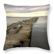 Reaching To The Horizon Throw Pillow