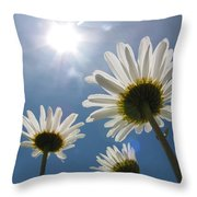 Reaching Up To Sol Throw Pillow