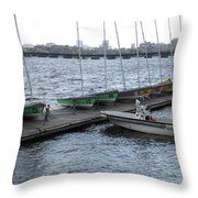 Ready And Waiting On The Charles Throw Pillow