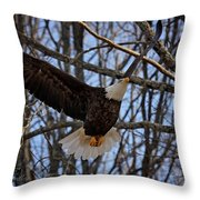 Ready For A Landing Throw Pillow