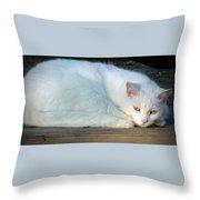 Ready For A Nap Throw Pillow