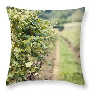 Ready For Harvest  Throw Pillow by Lisa Russo