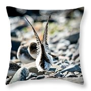 Ready For Lift Off Throw Pillow