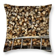 Ready For Winter #1 Throw Pillow