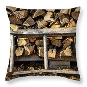 Ready For Winter #2 Throw Pillow