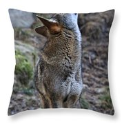 Ready To Howl Throw Pillow