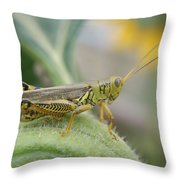 Ready To Jump...   # Throw Pillow