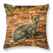 Ready To Spring Throw Pillow by Parker Cunningham