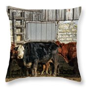 Real Cold Throw Pillow