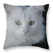 Really Get Over It Throw Pillow