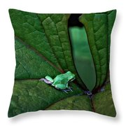 Really In The Groove  Throw Pillow