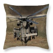 Rear View Of An Israeli Air Force Ch-53 Throw Pillow