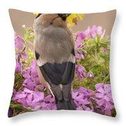 Rear View Of Female Bullfinch Standing Throw Pillow