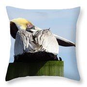 Rear View Pelican Throw Pillow
