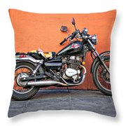 Rebel With A Cause...sorta Throw Pillow
