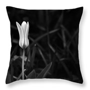Reborn Throw Pillow