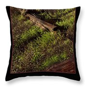 Reclaim No.4 Throw Pillow