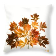 Reconstructed Full Moon Maple Throw Pillow