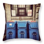 Recycled Boston Throw Pillow