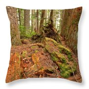 Recycling In The Cheakamus Rainforest Throw Pillow