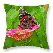 Red Admiral Butterfly And Zinnia Flower Throw Pillow