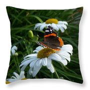Red Admiral On A Daisy Throw Pillow