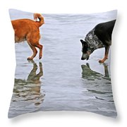 Red And Blue Heelers Throw Pillow