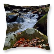 Red And Green And All Things In Between Throw Pillow