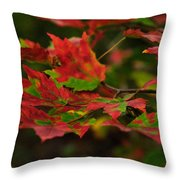 Red And Green Autumn Leaves Throw Pillow