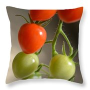Red And Green Tomatoes Throw Pillow